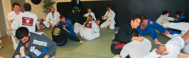 MOVE Into New Fitness With Brazilian Jiu Jitsu