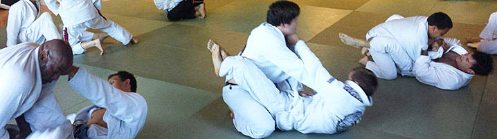 Most Effective Martial Art: Brazilian Jiu Jitsu