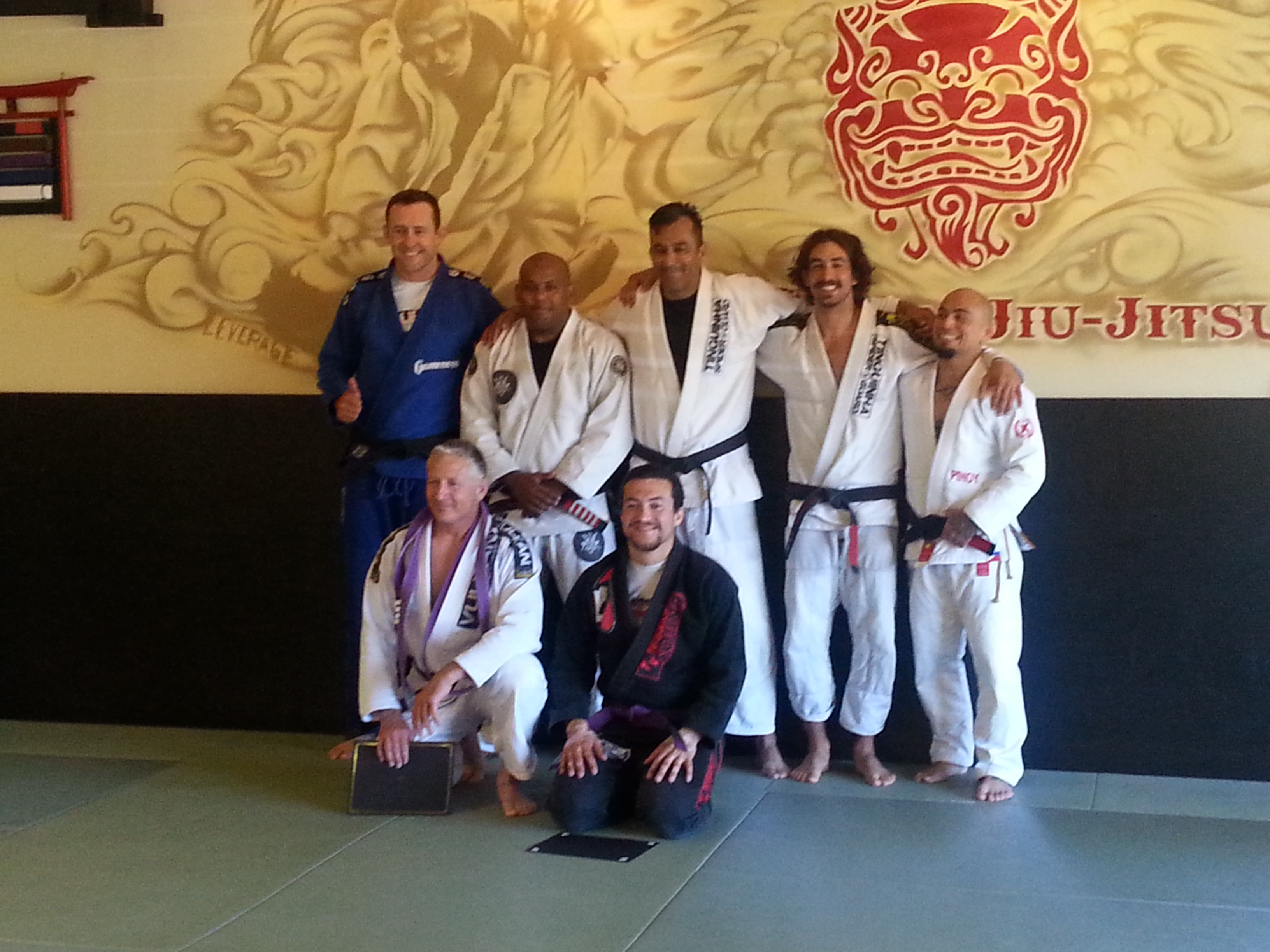 Bjj brown belt purple belt