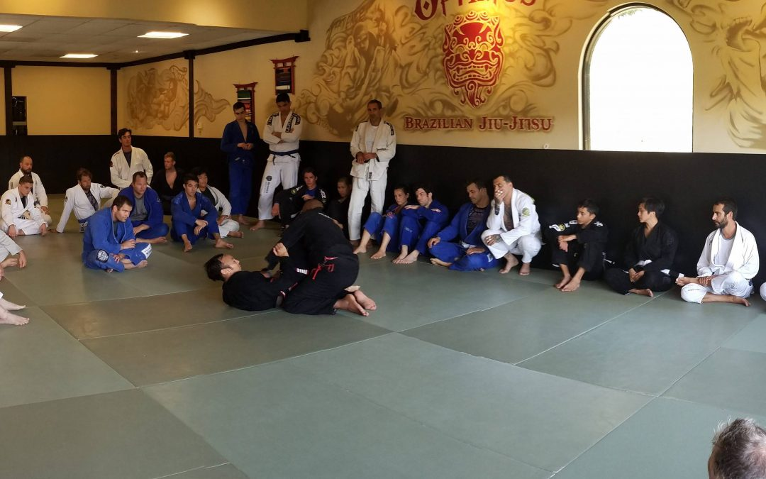 Optimus Brazilian Jiu-Jitsu is Open!