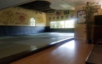 New Deluxe Jiu-Jitsu Flooring And Mats